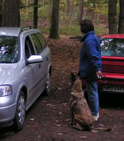 Begegnung mit Autos