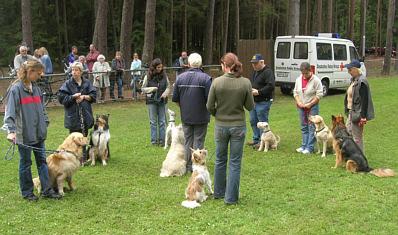 Dittweiler Hundesportler
