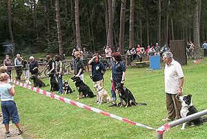 Hundeführer Vorführung